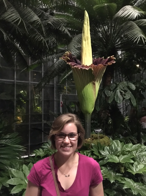 Paige Blog Corpse Flower